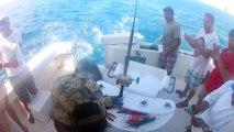 Ces pecheurs vont avoir une visite incroyable sur le bateau... Lion de mer affamé