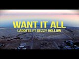 Want It All By Ladotee Feat. Dezzy Hollow (Official Music Video)
