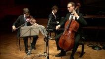 """Anton Dvorak   Trio pour piano et cordes n° 4 en mi mineur op. 90 """"Dumky Trio"""" (extraits) par le Trio Busch"""