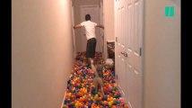 Ce chien ne sait plus où donner de la tête dans cette piscine de 5400 balles