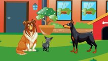 Funny Animated Cartoon | TooTooZic Babies Songs | Pets and Artiodactyls | Cartoon for Children