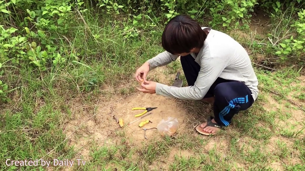 Bird Trap using Pliers and Pen – How to Create a Simple Bird Trap Make from Pliers and Pen