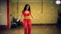 World Famous Belly Dance || In India With  Mere Rashke Qamar  || Indian Girl It's Just Amazing Belly Dance