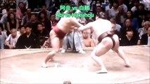 Sumo Digest[Natsu Basho 2018 Day 6, May 18th]20180518夏場所6日目大相撲ダイジェスト