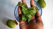 ইফতারের জন্য কাঁচা আমের স্পেশাল শরবত/Green Mango Juice Recipe | Kacha Amer Shorbot Recipe