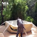 Inflatable Glamping Tent - Great For Glamping Holidays