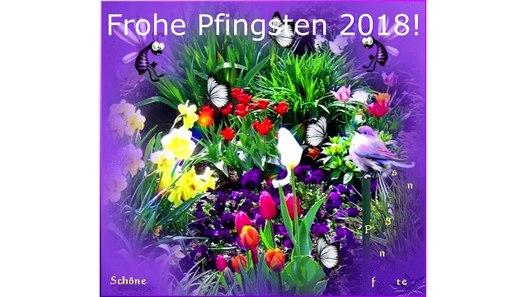 Whatsapp Pfingsten Video