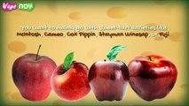 How to Make Apple Pie - Apple Pie Recipe Easy