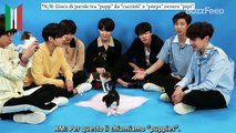 [SUB ITA] BTS Plays With Puppies While Answering Fan Questions