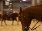 Equitation western#salon du cheval 2007