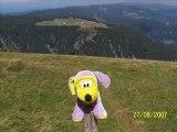 Kiki le chien mauve dans les Vosges