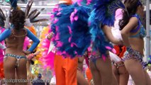 サンバ美女だらけ! 素敵なサンバ隊 リベルダージ SAMBA CARNIVAL (サンバカーニバル) (2)