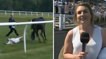 Cette présentatrice anglaise arrête un cheval au galop en plein direct