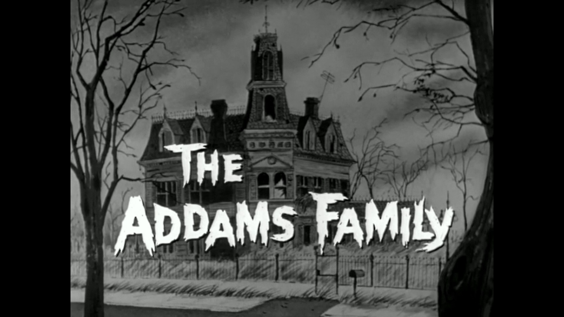 The Addams Family: The Addams Family Tree (review)