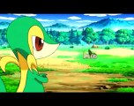 Pokemon Se15  Ep07 Battling Authority Once Again! HD Watch