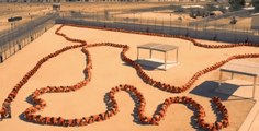 The Human Centipede 3 - bande annonce - Horreur