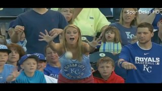 Most Funny Moments of Fans in Sports History ● HD