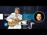 Roberto Carlos - Eu te Amo, Te amo, Te amo (AULA GRATUITA) - Cordas e Música