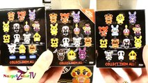 ФАНКО ФНАФ МАНГЛ ЭКСКЛЮЗИВ от WALMART FUNKO Mystery Minis Five Nights At Freddys FNAF Blind Box
