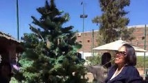 The U.S. Embassy in Asmara wishes everyone a Merry Christmas and happy holidays! Here is a short video of us decorating the Embassy tree!