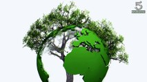 Top 5 Interesting Facts About Earth