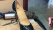 La chaussure se métamorphose près de Fougères