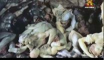 Documental - Batalla de los Dioses - Medusa