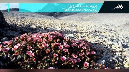 أشهر الجزر النائية في العالم