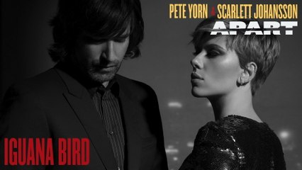 Pete Yorn - Iguana Bird