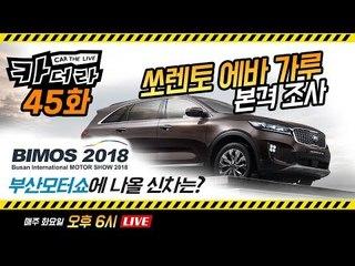 '쏘렌토 에바 가루' 본격 조사, 부산모터쇼에 나올 신차는?…카더라 45회