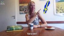 Learn Swedish in Swedish - Svenska på svenska - Swedish free lesson