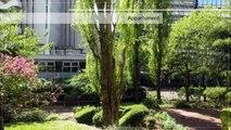 A vendre - Appartement - PUTEAUX (92800) - 1 pièce - 44m²
