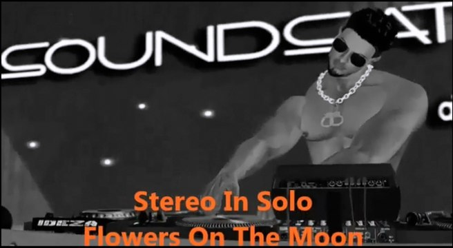 Stereo In Solo - Flowers on the moon (Teimalove video)