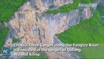 China's Three Gorges is famous for its spectacular view as well as many historical and cultural sites. In recent years, the ecosystem in its Qutang Gorge has be