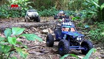 Axial SCX10 Dingo Jeep Wrangler Wraith at Durian Loop RC 4x4 Scale Truck Trails