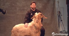 Google Map Search: I Pet Goat II and CERN Appears - video dailymotion
