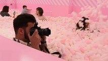 Süßes Vergnügen: Ein Spaßmuseum mit Marshmello-Pool