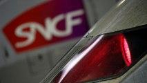 """Riforma delle ferrovie in Francia, il relatore a Euronews """"è solo l'inizio"""""""