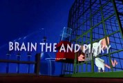 Pinky and the Brain S3E19 - Pinky and the Brainmaker