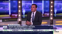 Idées de placements: Baisse des rendements et taux bas, faut-il sortir des fonds en euros? - 05/06