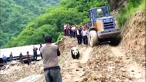 Giant panda wanders into Chinese village