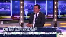 Idées de placements: Baisse des rendements et taux bas, faut-il sortir des fonds en euros ? - 05/06