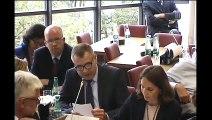 Commission des affaires étrangères : M. Jean-Baptiste Lemoyne, Secrétaire d'État auprès du Ministre de l'Europe et des Affaires étrangères - Mardi 5 juin 2018