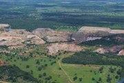 Tout savoir sur la déforestation