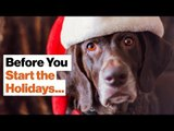 Conversation Tips for Surviving the Holidays | Angie McArthur