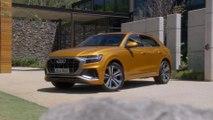 2019 Audi Q8 Exterior Design