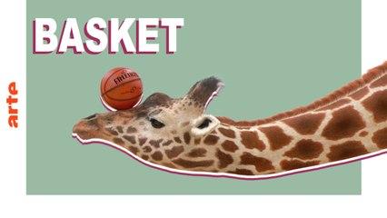 Basket - ATHLETICUS - ARTE