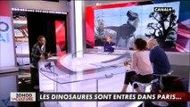Peut-on imaginer recréer des dinosaures comme dans Jurassic Park ? Un chercheur répond !