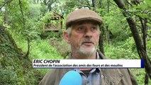 Alpes-de-Haute-Provence :  les fours vont chauffer pour la fête de l'été de Dauphin