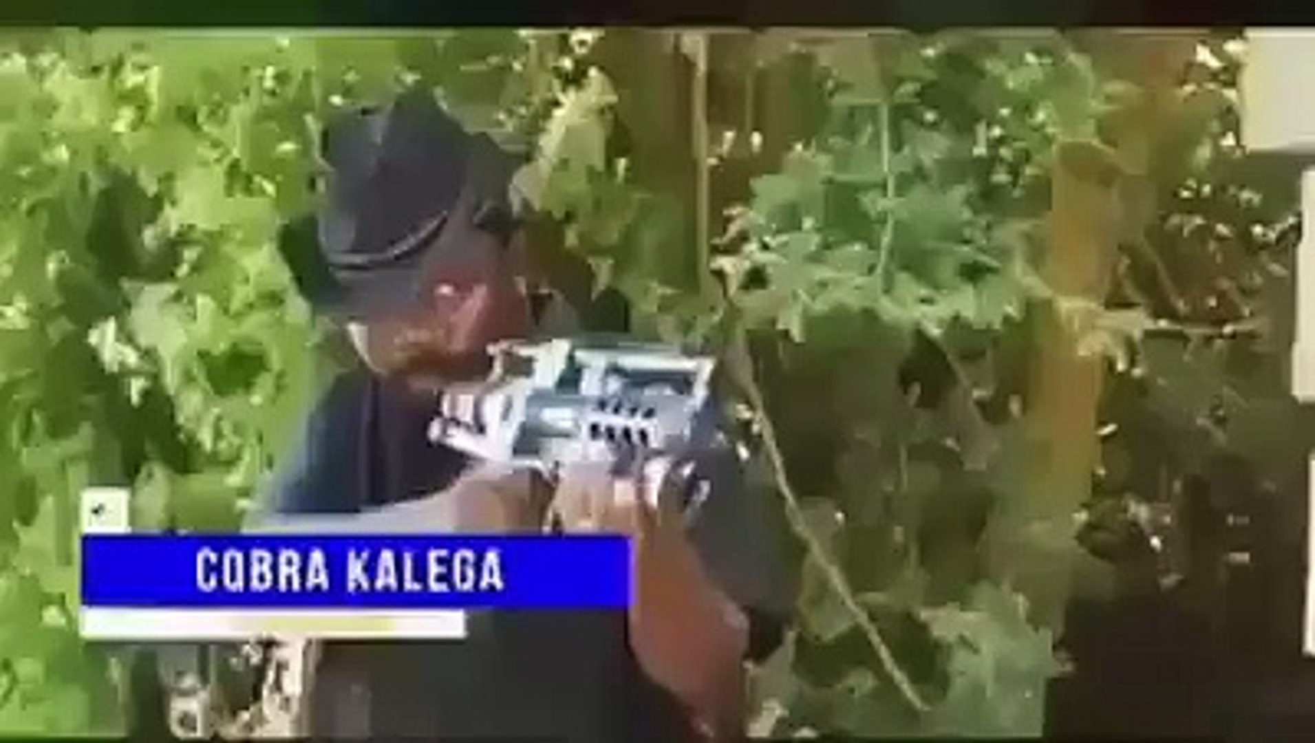 Could this be Nollywood or firewood?